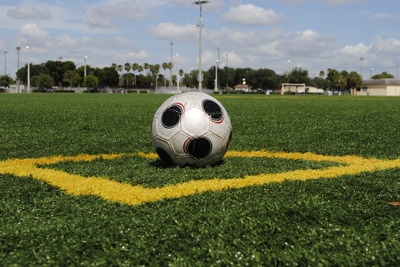 synthetic turf for sports fields
