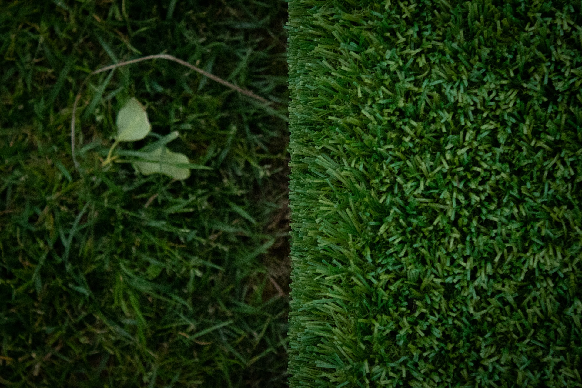 Myths About Synthetic Turf